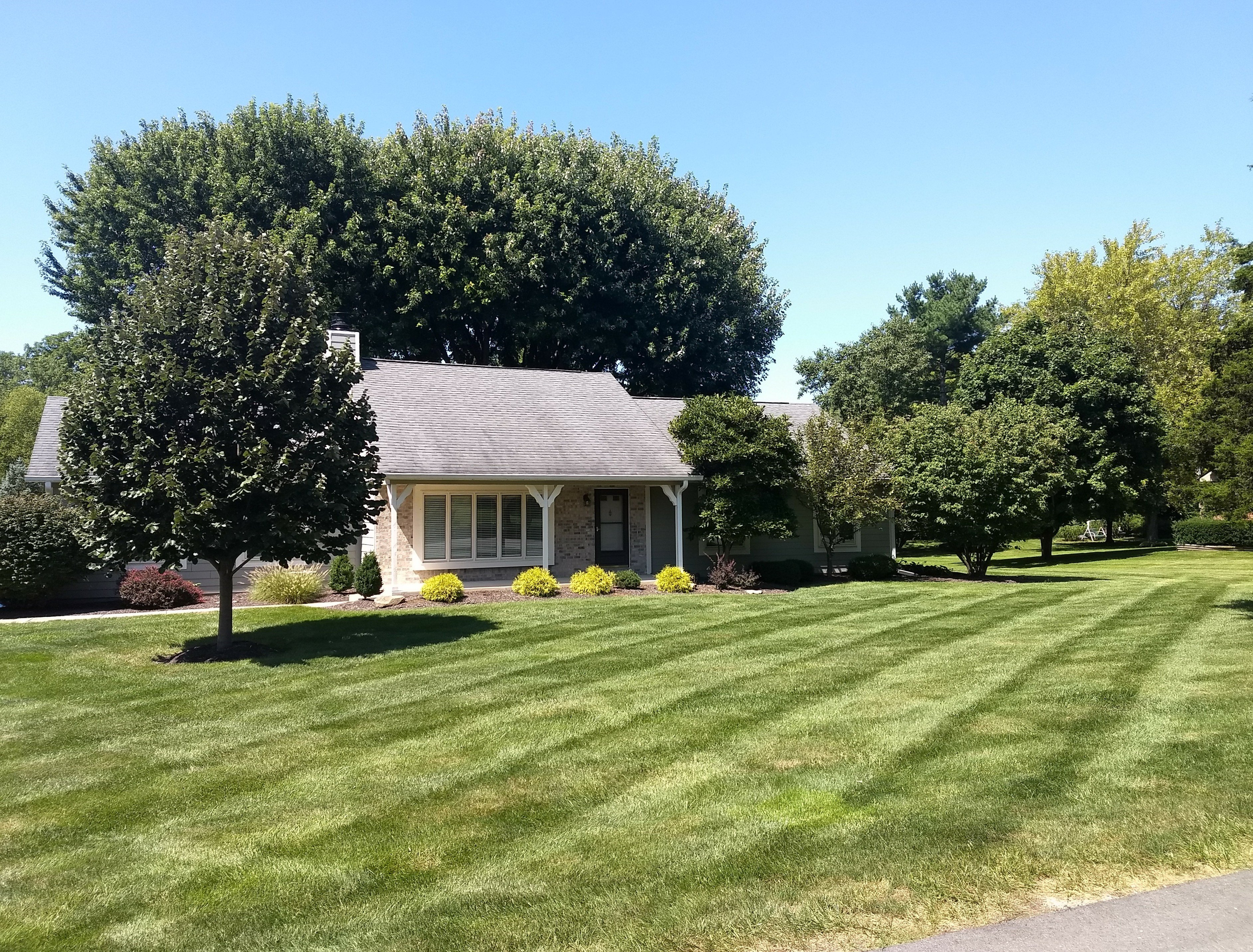 Cultural Practices For A Perfect Lawn Lawn Medic